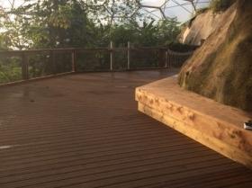 eden-rope-bridge-canopy2