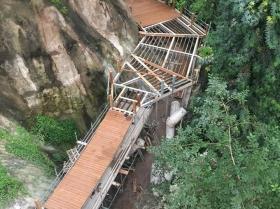eden-rope-bridge-canopy6